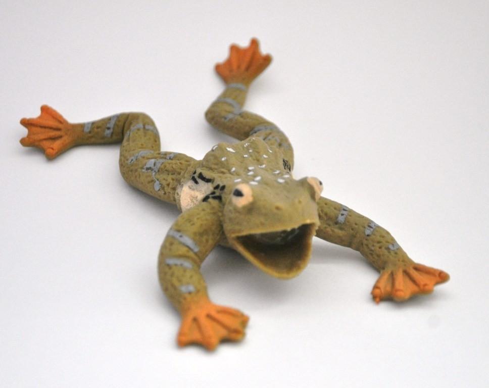 Макси лягушки картинки